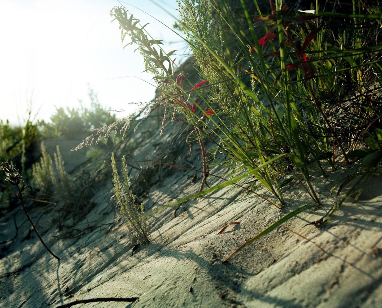 Mamiya RZ67 Pro ii Kodak Portra – Beach Scenes