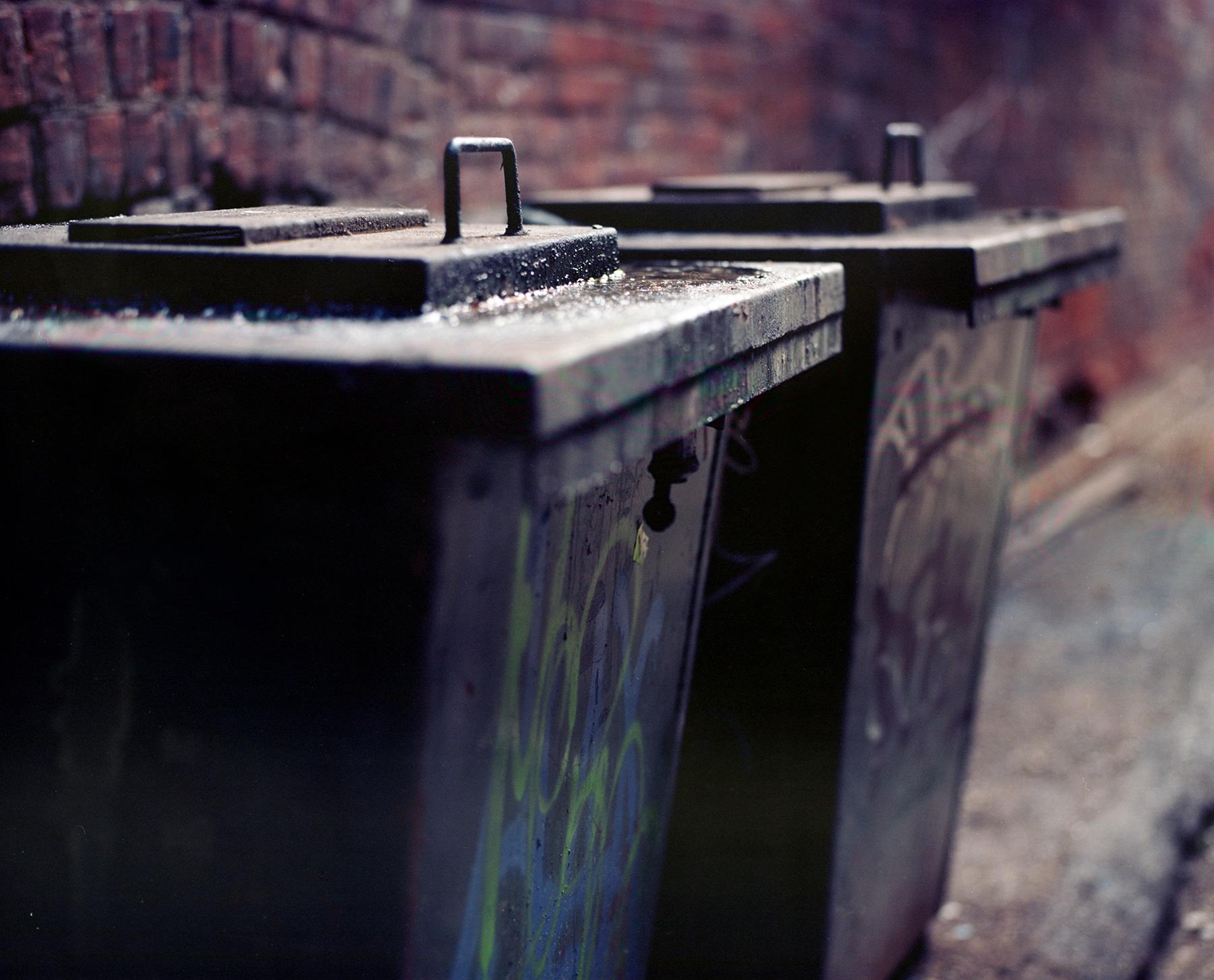 Kodak Ektar 100 Medium Format ilm Mamiya rz67