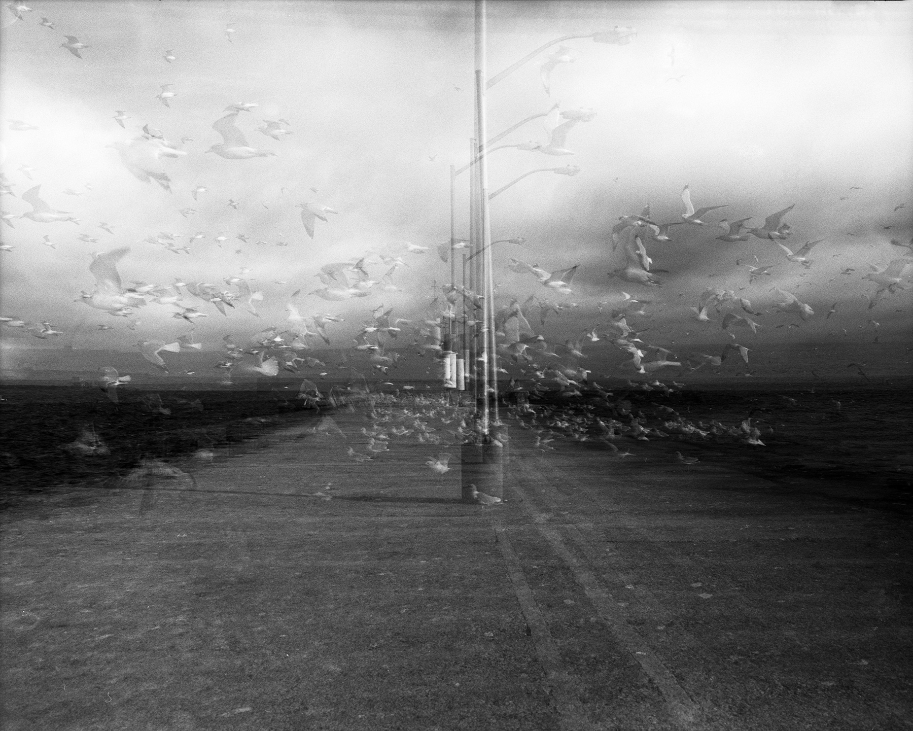 Fuji Acros 100 film Maimya RZ67 Multiple Exposure