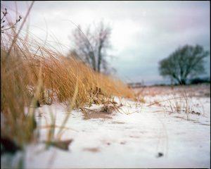 Mamiya RZ67 Pro ii Medium Format film photography