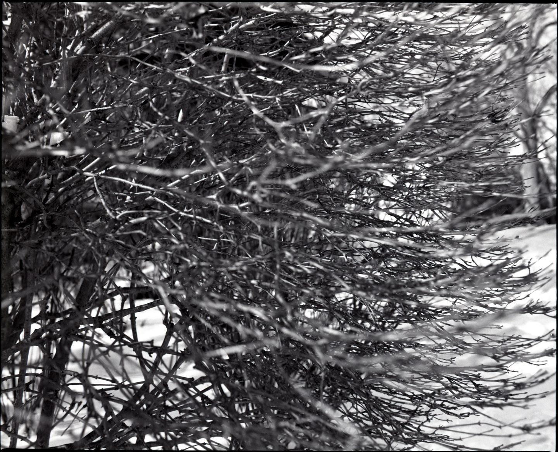 365-27 Rollei Superpan 200 film
